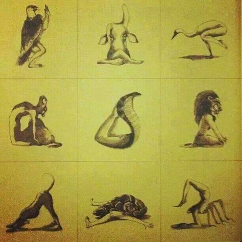 ASANA -To Be (Established/Seated in)