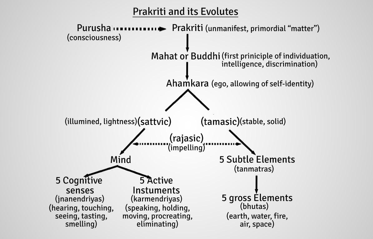 The-System-of-Samkhya